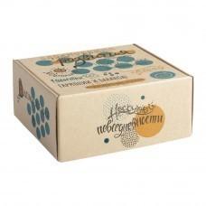 Коробка Carpe Diem, малая